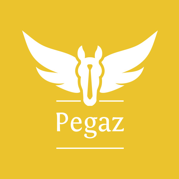 Pegaz Recruitment Ltd